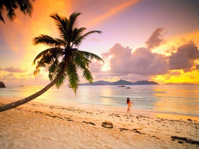 praia, verão, saudades, mergulho